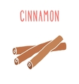 Cinnamon sticks isolated on white vector image vector image