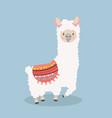 cute lama alpaca fluffy vector image vector image