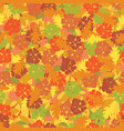 seamless texture with colorful autumn leaves vector image