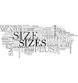 sizes word cloud concept vector image vector image