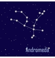 The constellation Andromeda star in the night sky vector image vector image