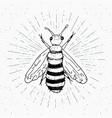 vintage label hand drawn bee grunge textured vector image vector image