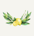 watercolor hand drawn wreath with lemon and vector image