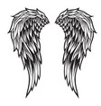 wings bird black white 777 vector image vector image