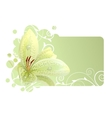 beautiful frame with white lily vector image vector image