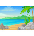 big stones and palm tree on beach vector image vector image