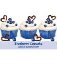 blueberry cupcakes realistic 3d detailed vector image vector image