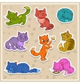 Cats stickers set vector image vector image