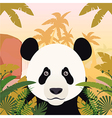 Panda on the Jungle Background vector image