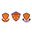 set basketball sport icons vector image