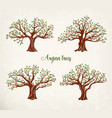 set of argania or argan fruit trees with leaves vector image vector image