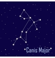 The constellation Canis Major star in the night vector image vector image