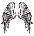 wings bird black white 999 vector image vector image
