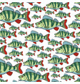 bass fish repeat pattern vector image vector image