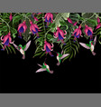 border with hummingbirds and tropical flowers vector image
