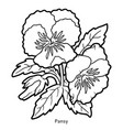coloring book flower pansy vector image vector image