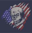 skull usa flag vector image vector image