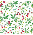 white christmas pattern with rose plant and buds vector image vector image
