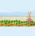 a cute bunny collecting beetroot vector image vector image