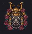 angry wild boar head in samurai helmet