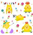 Chickens set image