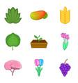 garden grooming icons set cartoon style vector image vector image