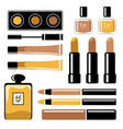 set cosmetics on a white background vector image
