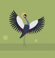 wedding dance of the crowned crane vector image