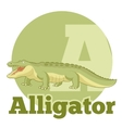 ABC Cartoon Alligator vector image vector image