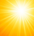 Abstract sunny light background vector image