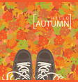 autumn banner with the words and brown shoes vector image vector image