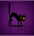 black silhouette of angry cat with vector image