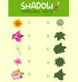 flower shadow matching game template vector image