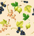 seamless pattern black and white currant berries vector image