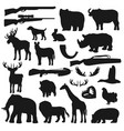 african safari hunt animals and birds hunter ammo vector image vector image