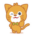 character of cat pets collection vector image vector image