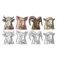 farm animals icon set pig cow sheep and goat vector image