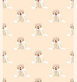 golden retriever dog bride on beige ivory vector image vector image