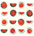 red and green hand drawn vintage watermelon vector image vector image