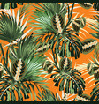 tropical jungle plants and palm monstera leaves vector image vector image
