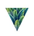watercolor heliconia leaves vector image vector image