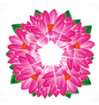 Water lily flower background vector image