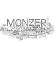Adversities and leadership profile of monzer vector image