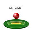 cricket playground 3d icon for betting vector image