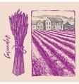 lavender bouquet with landscape vector image vector image