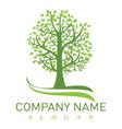 oak tree logo vector image vector image