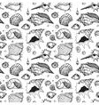 seamless pattern sea shells vector image