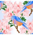 seamless texture small bluebird and rhododendron vector image vector image