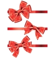 set of different types of red satin ribbons with vector image