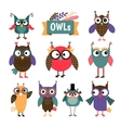 Owl coloured icons set vector image